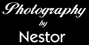 Photography by Nestor